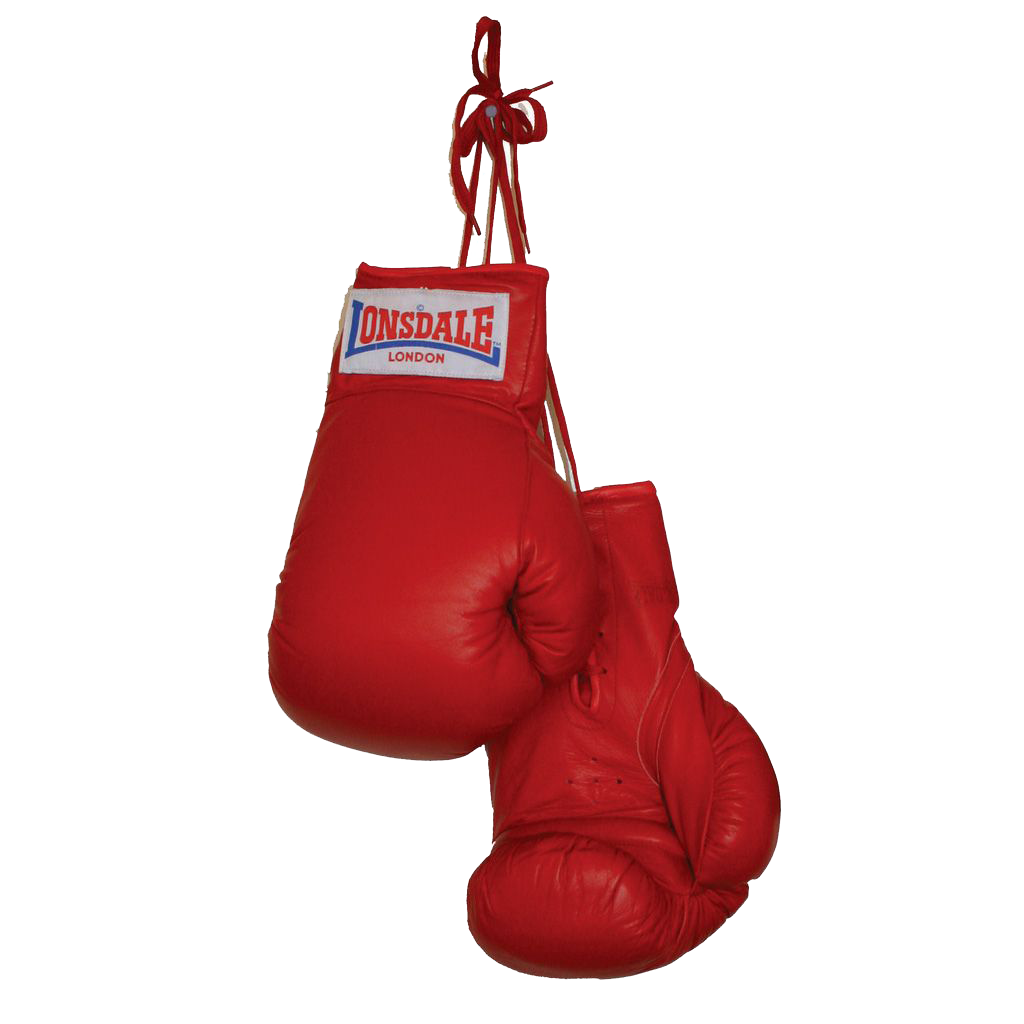 Boxing Gloves Download Png PNG Image - Boxing HD PNG