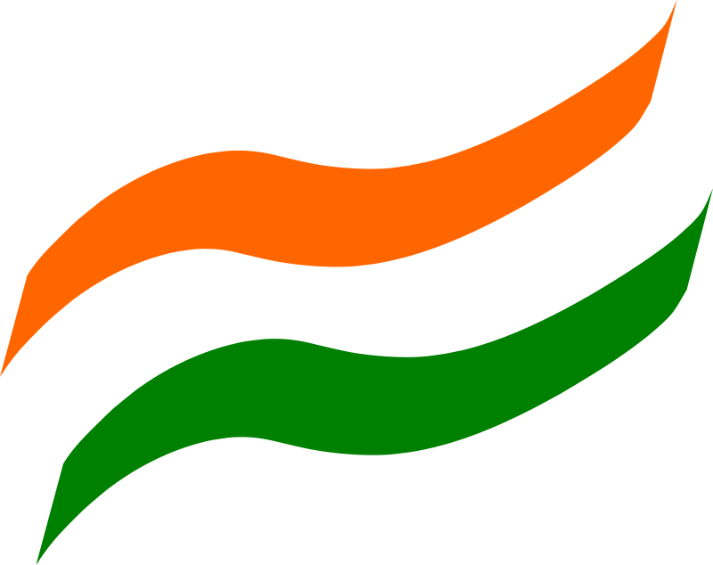 Boy With Indian Flag PNG - 158257