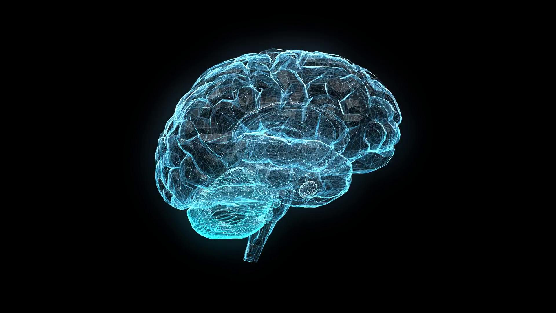 Brain HD PNG - 96382