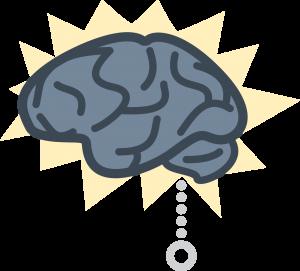 brain - Brain Memory PNG