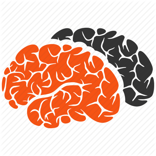 brain, brains, brainstorming, intellect, memory, mind, neuro icon - Brain Memory PNG
