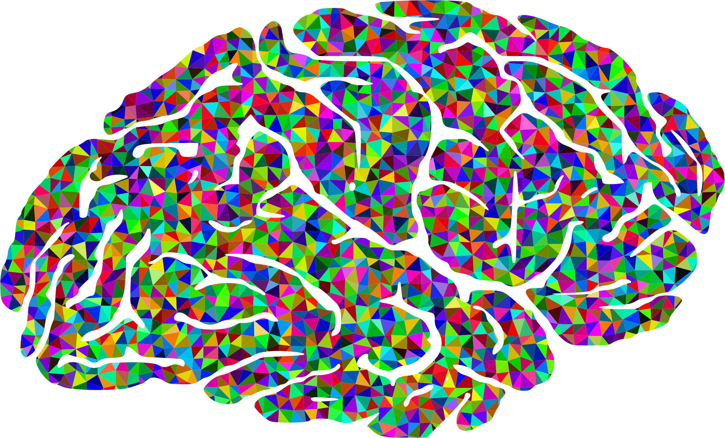 BIG IMAGE (PNG) - Brain PNG