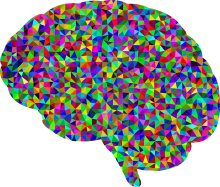 colorful-brain.png - Brain PNG