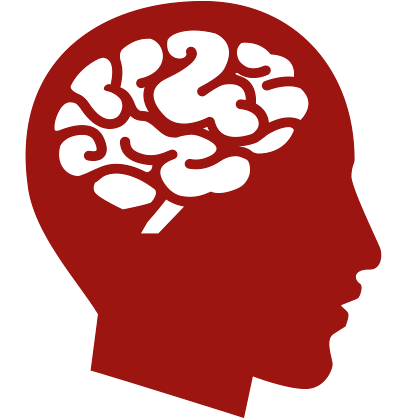 Human Brain image #2526