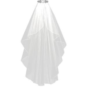 Bridal Veil PNG - 56503