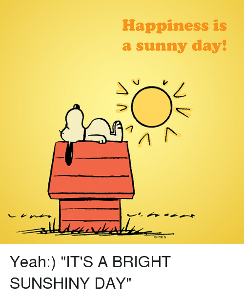 Memes, ????, and Day: Happiness is a sunny day! A OPNTS Yeah - Bright Sunny Day PNG