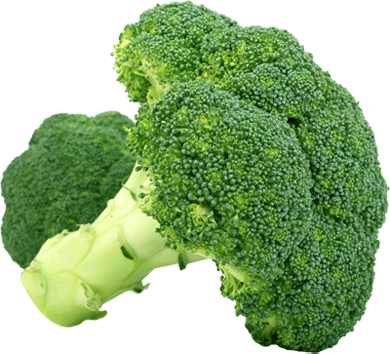 Broccoli Free PNG Image - Broccoli HD PNG
