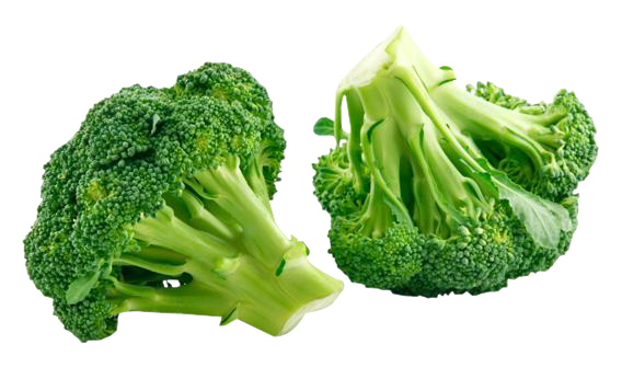 Home u003e Broccoli PNG Image. More View - Broccoli HD PNG