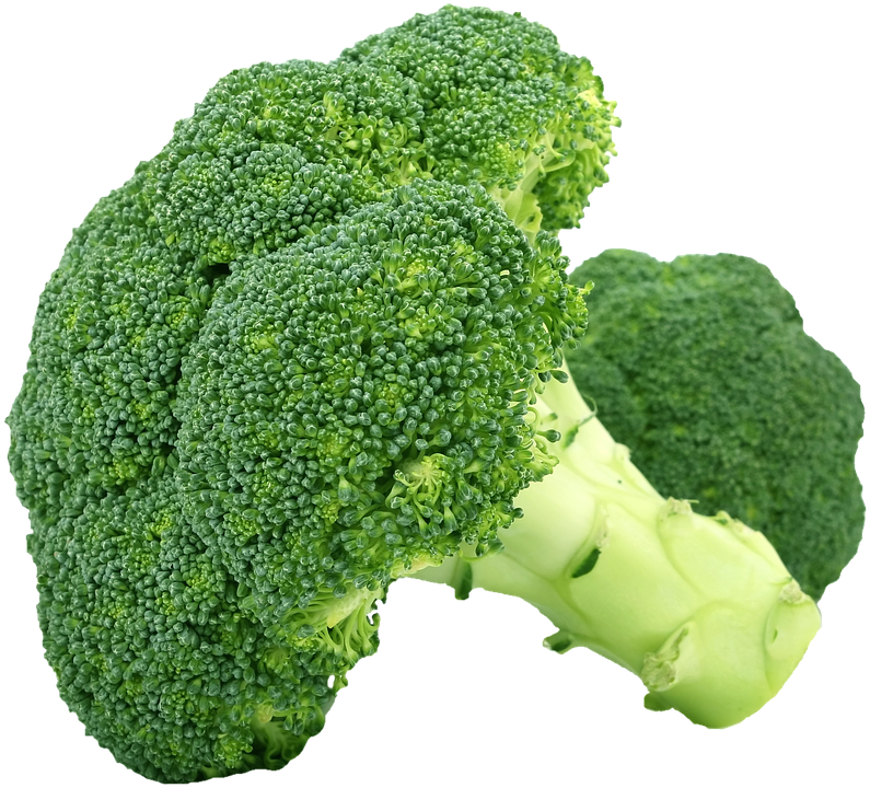 Isolated, Broccoli, Vegetables, Healthy, Food, Green - Broccoli HD PNG