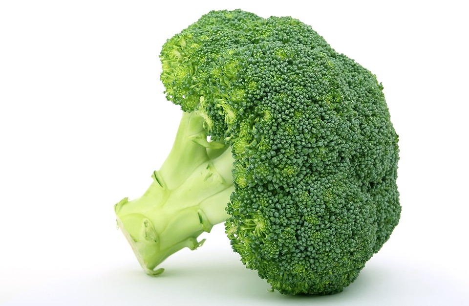 Appetite, Broccoli, Brocoli Broccolli, Calories - Broccoli PNG