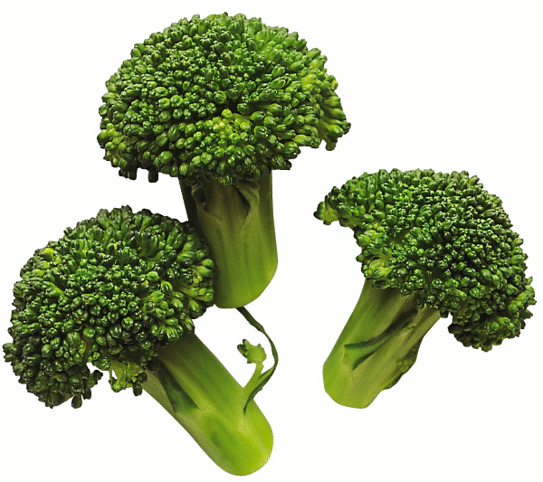 broccoli 3 - Broccoli PNG