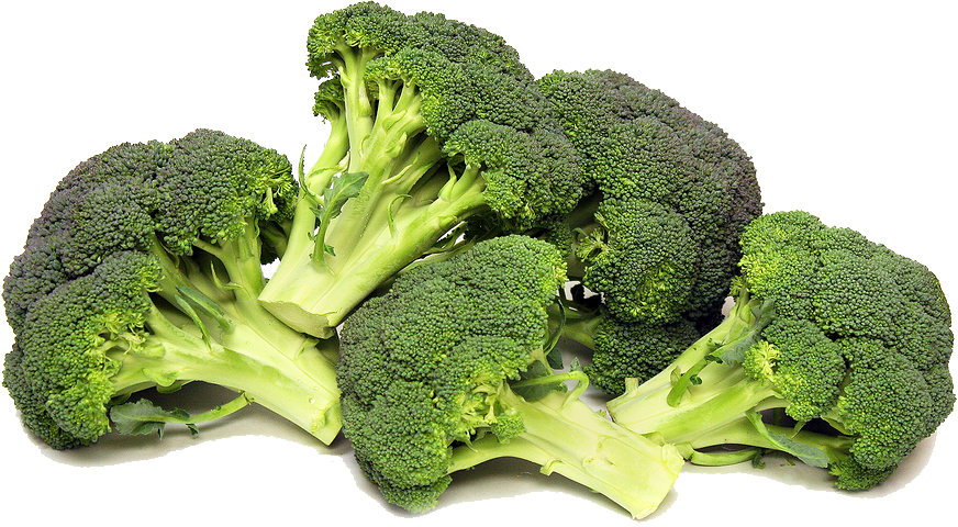 Broccoli PNG. Broccoli Transparent. Broccoli - Broccoli PNG