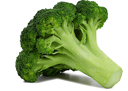 Filename: Broccoli-Free-Download-PNG.png - Broccoli PNG