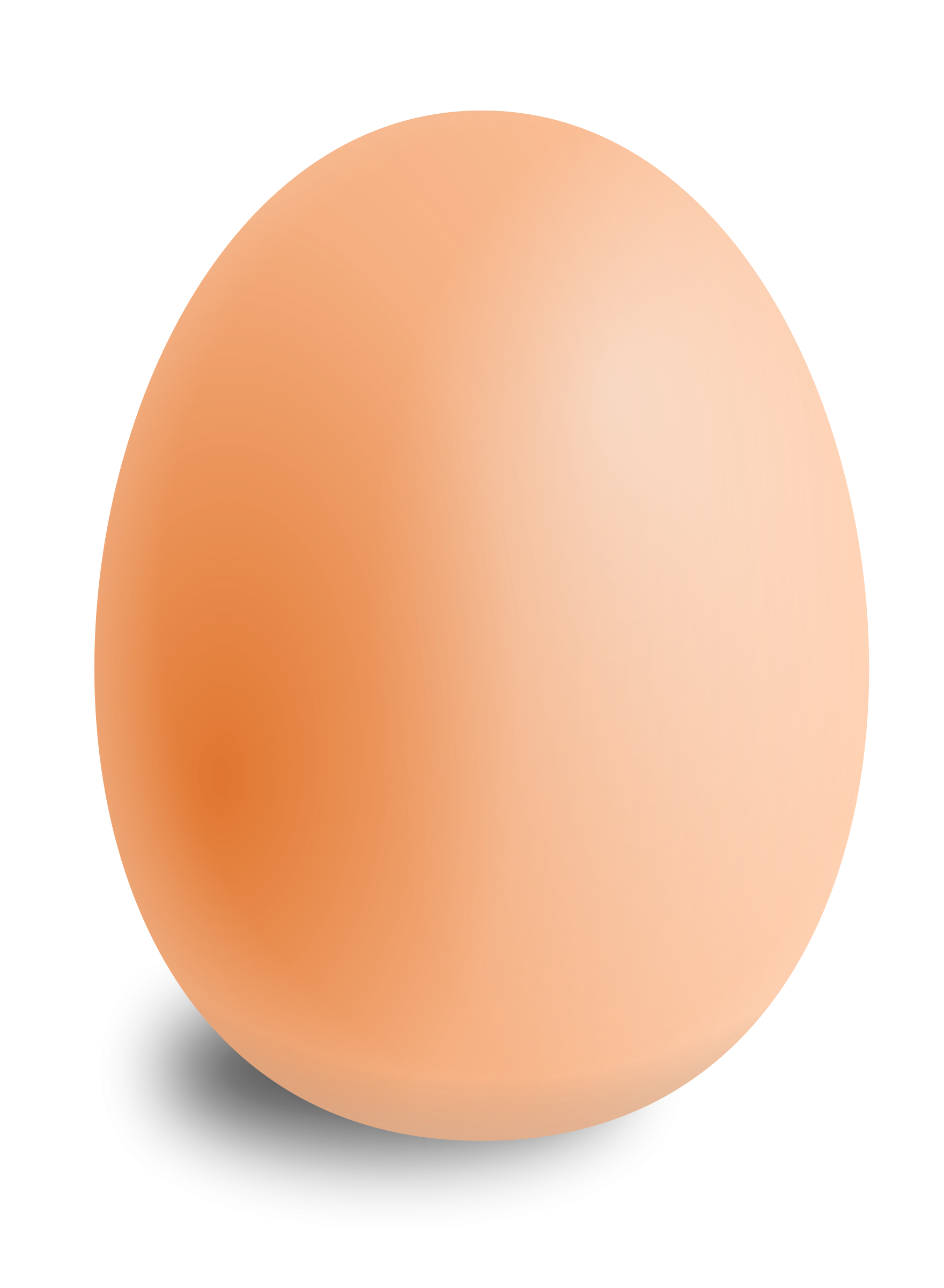 Broken Egg PNG HD - 124781