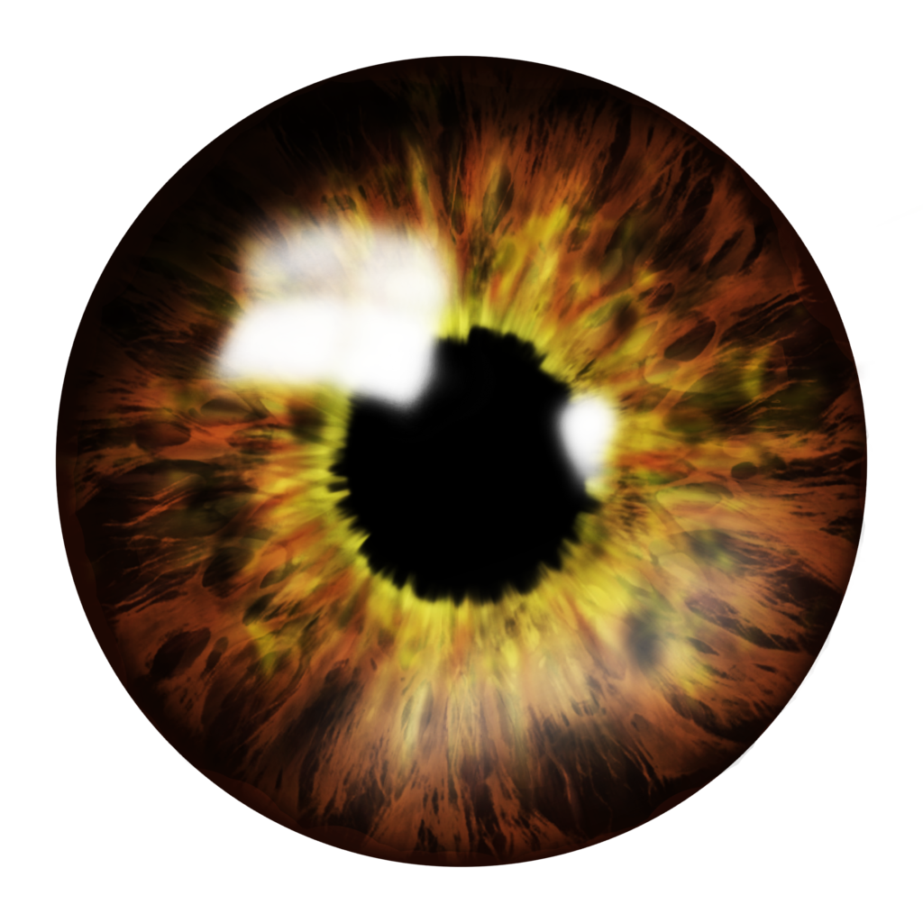 Eye PNG Transparent Eye.PNG Images. | PlusPNG