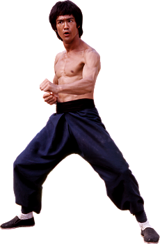 Bruce Lee PNG - 15374