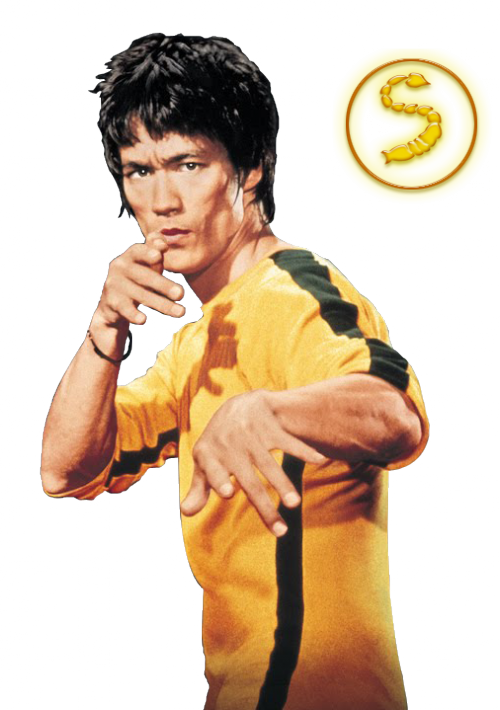 Upcoming ERB Discussion/Speculation [Archive] - Page 84 - Epic Rap Battles  of History Forum - Bruce Lee PNG