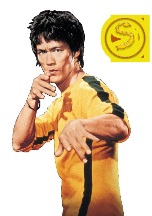 Bruce Lee PNG - 15378
