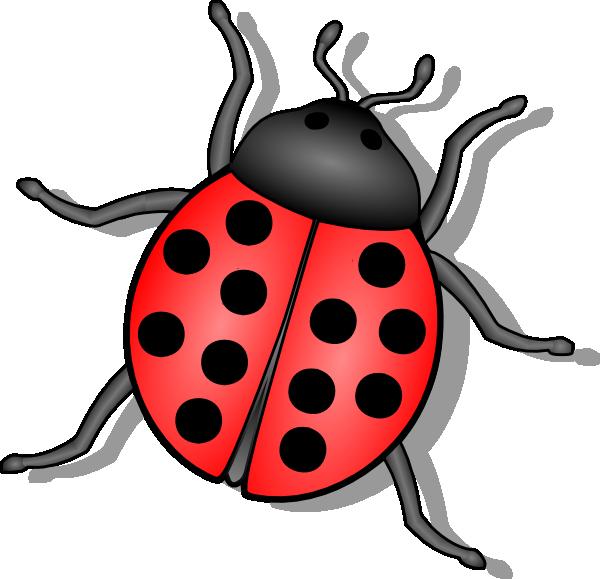 Lady Bug Clip Art At Clker Com Vector Clip Art Online Royalty Free - Bug HD PNG