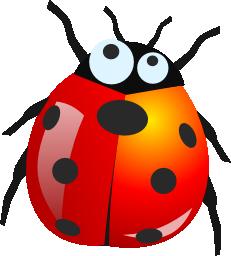 Image:Bug.png - Bug PNG