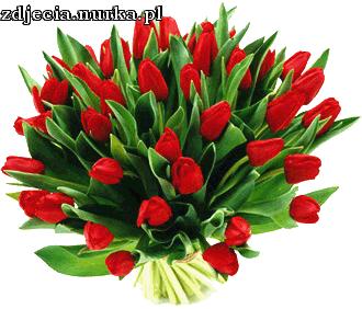 obrazki http://poison-ivy.home.pl/blog/kwiaty_na_dzien_kobiet/ - Bukiet Kwiatow PNG