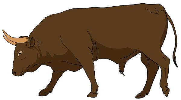 Bull PNG-PlusPNG.com-600 - Bull PNG