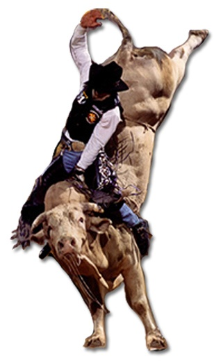 Both are PBR Legends! - Bull Riding PNG HD