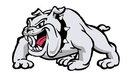 Bulldog PNG - 14864