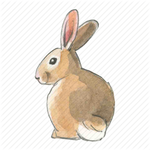 Bunny PNG - 27621
