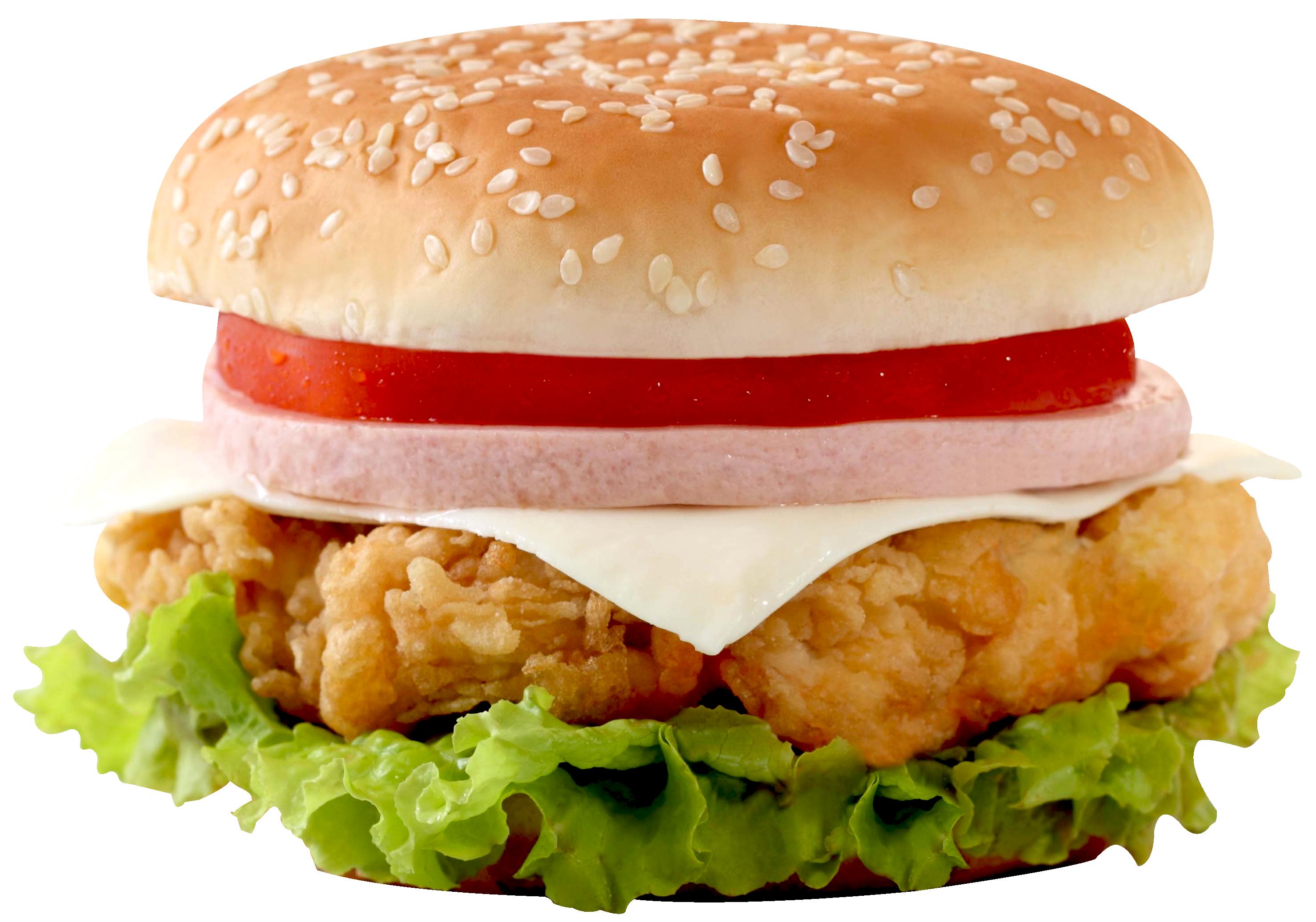 Burger PNG-PlusPNG.com-2960 - Burger PNG