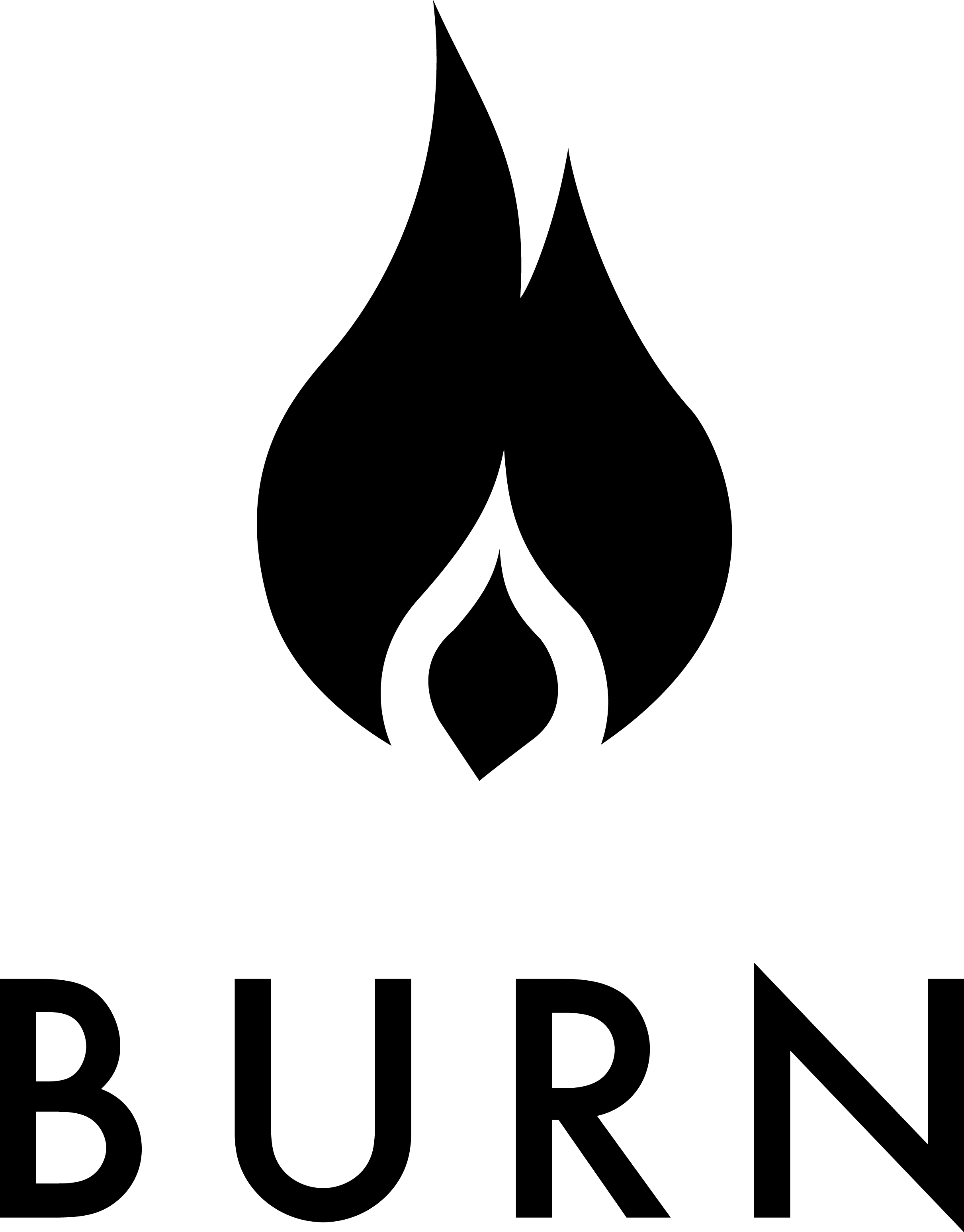 Burning Log PNG - 166258