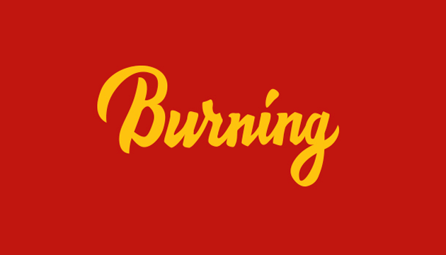 Burning Log PNG - 166259