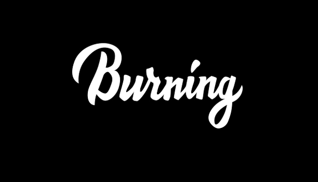 Burning Log PNG - 166261