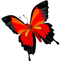 Butterflies PNG HD Free Download - 127367