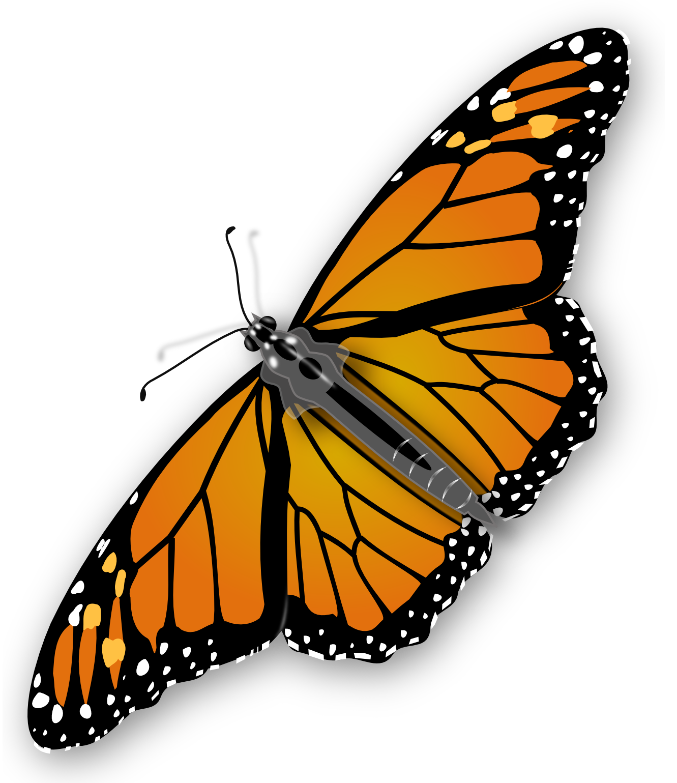 Butterflies PNG HD Free Download - 127364