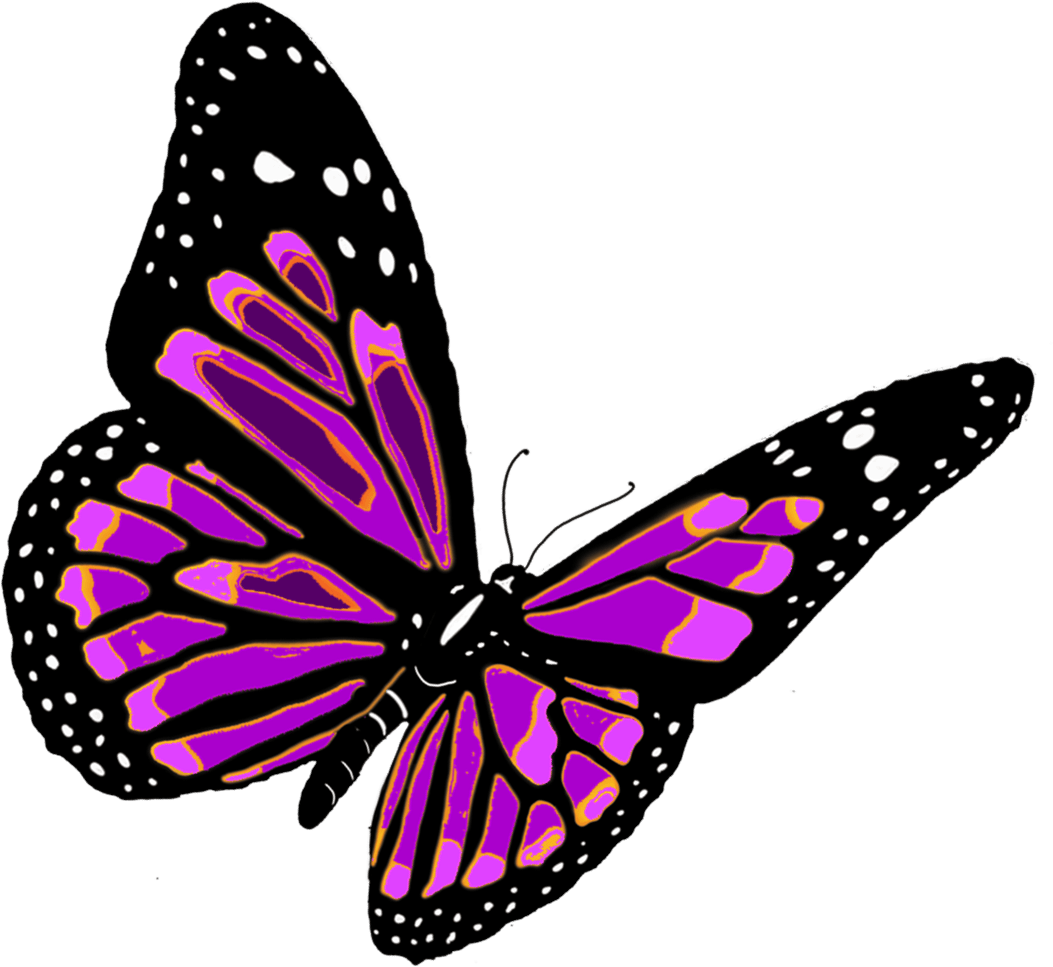 Butterflies PNG HD Free Download - 127366