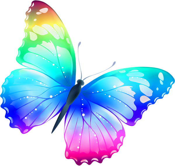 Butterflies Png Image #26559 - Butterfly Design PNG