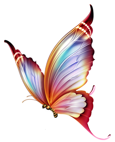 Butterfly . - Butterfly Design PNG