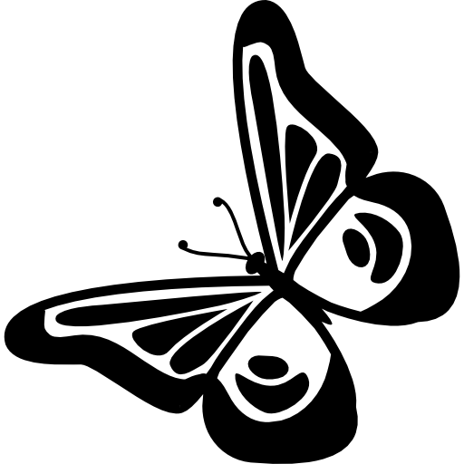 Butterfly design top view rotated to left free icon - Butterfly Design PNG