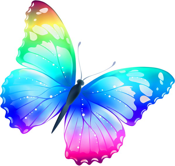 New HD Butterfly Png - Butterfly HD PNG