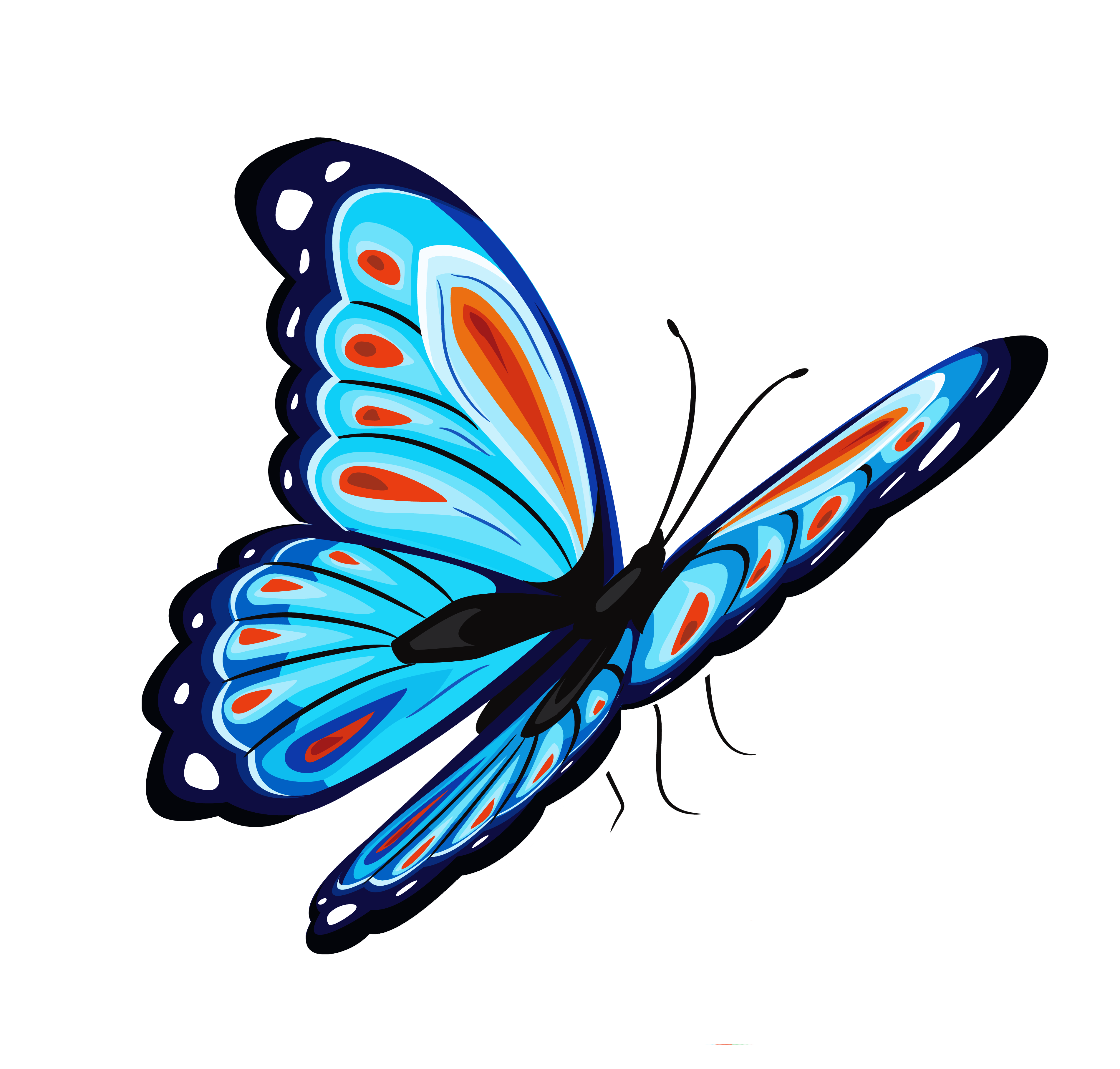 Butterfly Png Image #6732 - Butterfly PNG