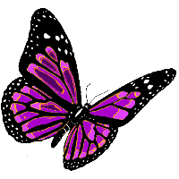 Flying Butterfly Png Image PNG Image - Butterfly PNG