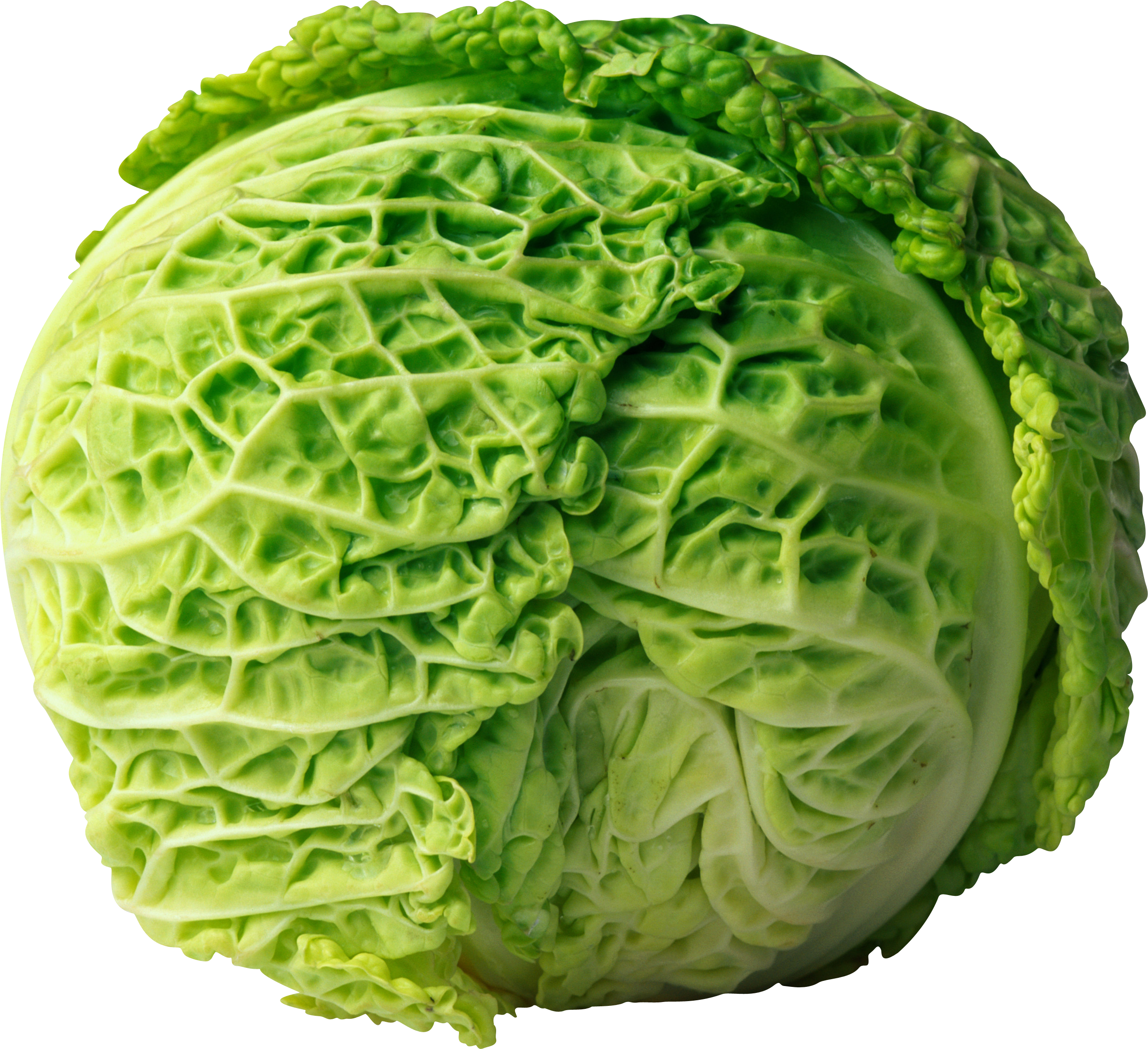 Cabbage PNG image - Cabbage HD PNG