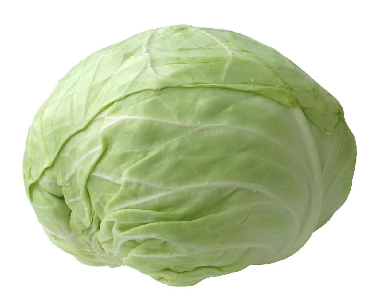 This high quality free PNG image without any background is about vegetables  and cabbage. - Cabbage HD PNG