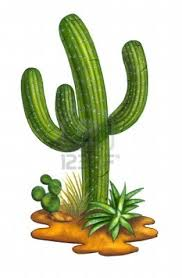 GaReNu0027SFoRNooBS Cactus.png - Cactus PNG