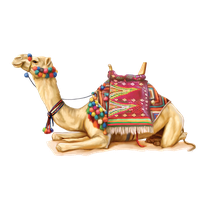 Camel Png 2 PNG Image - Camel PNG