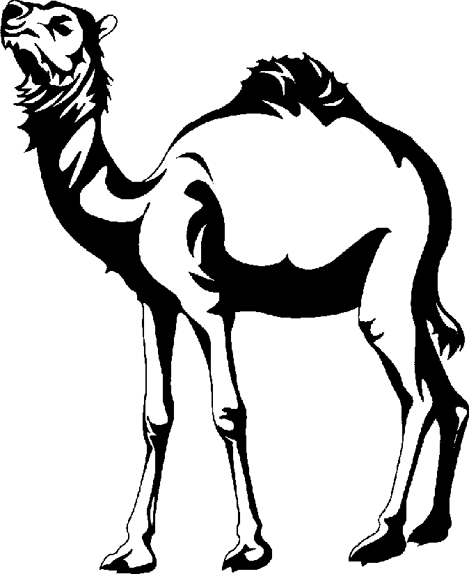 Camel PNG Black And White