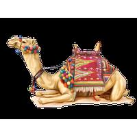 Camel PNG - 21100