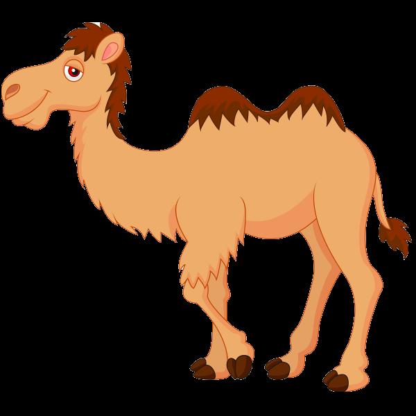 Camel PNG Cartoon-PlusPNG.com-600 - Camel PNG Cartoon