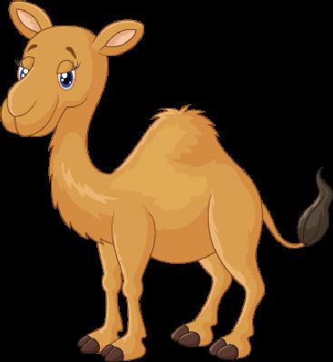 Cartoon Camel | Clipart - Camel PNG Cartoon